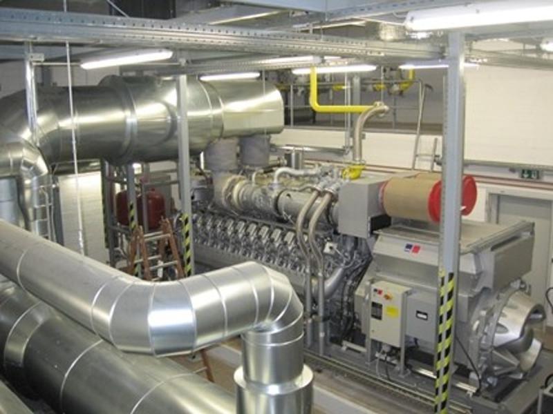 CHP-cogeneration-mtu-greenhouse-800x600